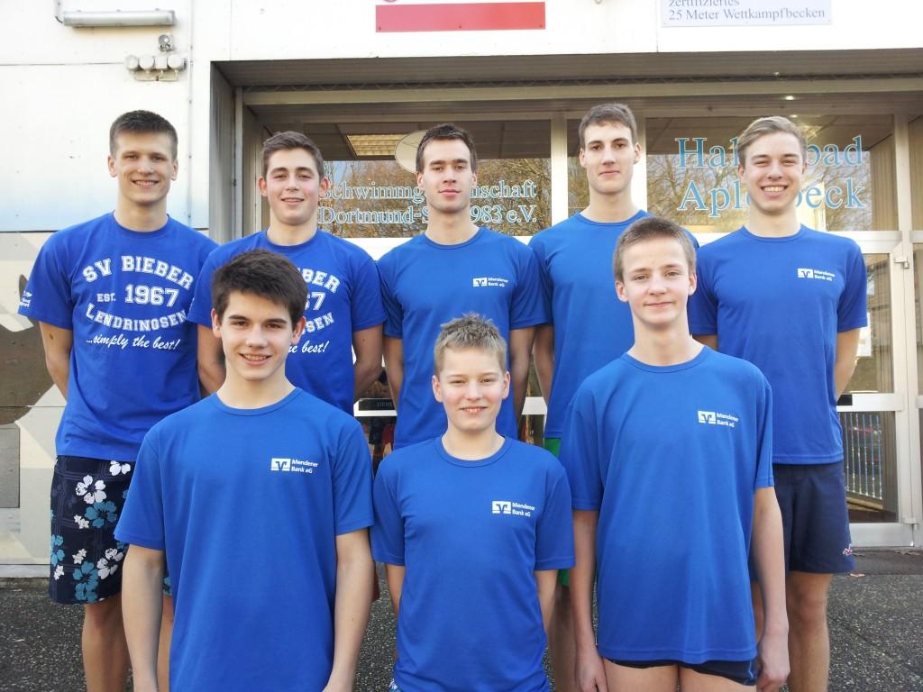 DMS Team 2014